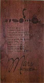 Mars Panel